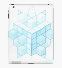 Snowflake Evolution iPad Case/Skin