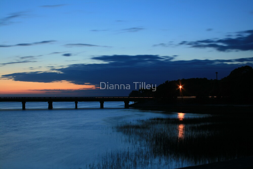 Hunting Island, SC -Sunset  by Dianna Tilley