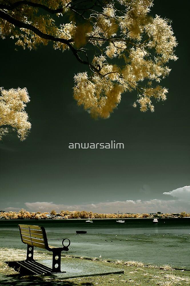 Under the Tree by anwarsalim