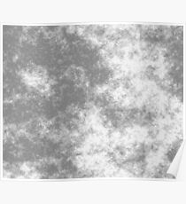 White on Grey 50 100 DP  Poster