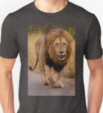 African lion, South Africa Unisex T-Shirt