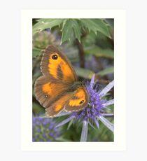 Gatekeeper Butterfly Art Print