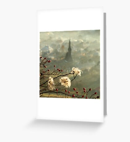 detail of a foggy morning... Greeting Card