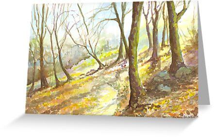 Misty Morning, Woodland Walk by Maureen Whittaker