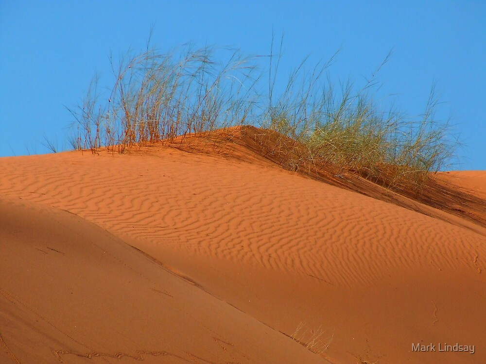kalahari Dune by Mark Lindsay