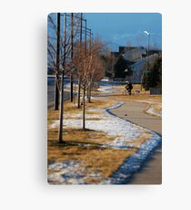 Neighborhood Canvas Print