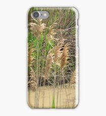 Muddy Waters iPhone Case/Skin