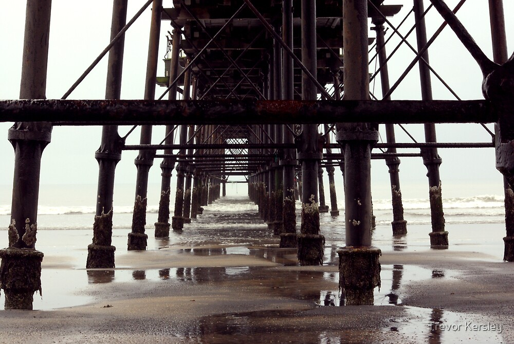 Under The Pier - Saltburn,North Yorkshire by Trevor Kersley