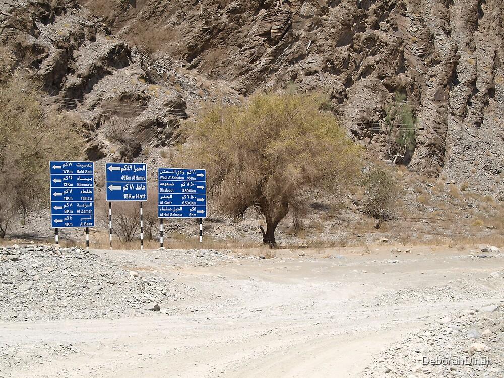 Signposts by DeborahDinah