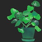 Green Plant On Black Background by Mireille  Marchand