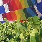 Balloon and Vines by joconti