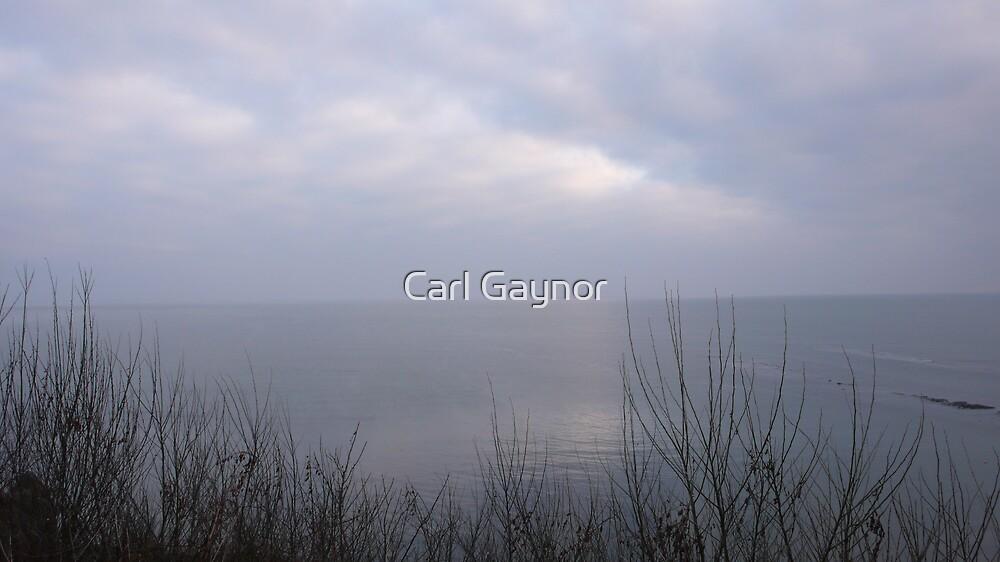 Untitled by Carl Gaynor