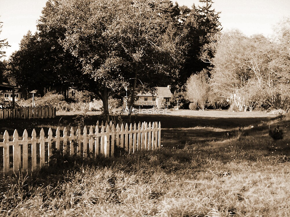 A lovely little place with White Fences by WaleskaL