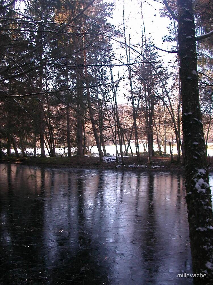 Magic Mirror Lake by millevache