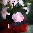 Tina's Song on a Red Violin by Carolyn Staut