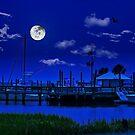 Murrells Inlet at Night by TJ Baccari Photography