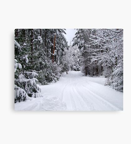 Snowy Country Road Canvas Print