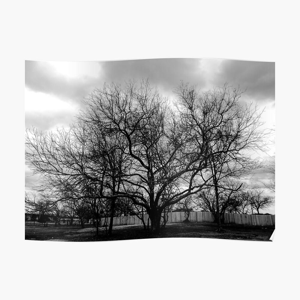 Der große Baum Poster