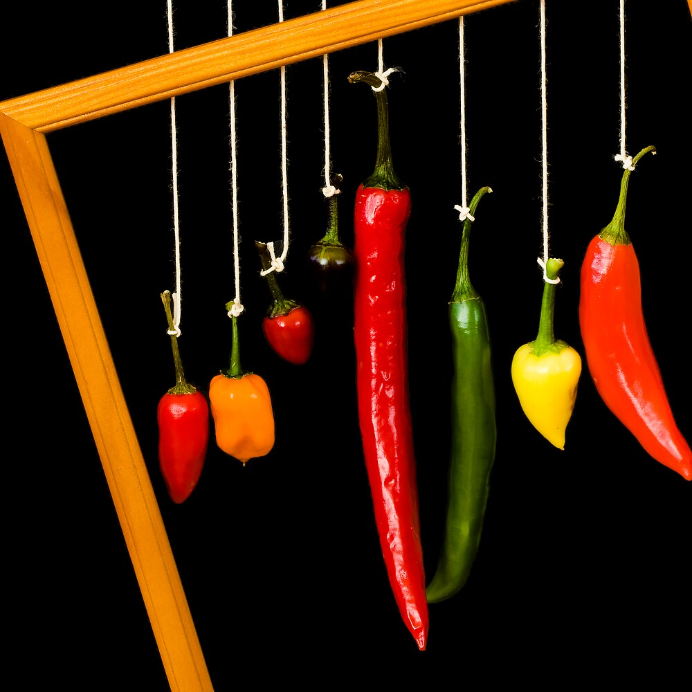 Form of Food - Chillies by Michael Morffew