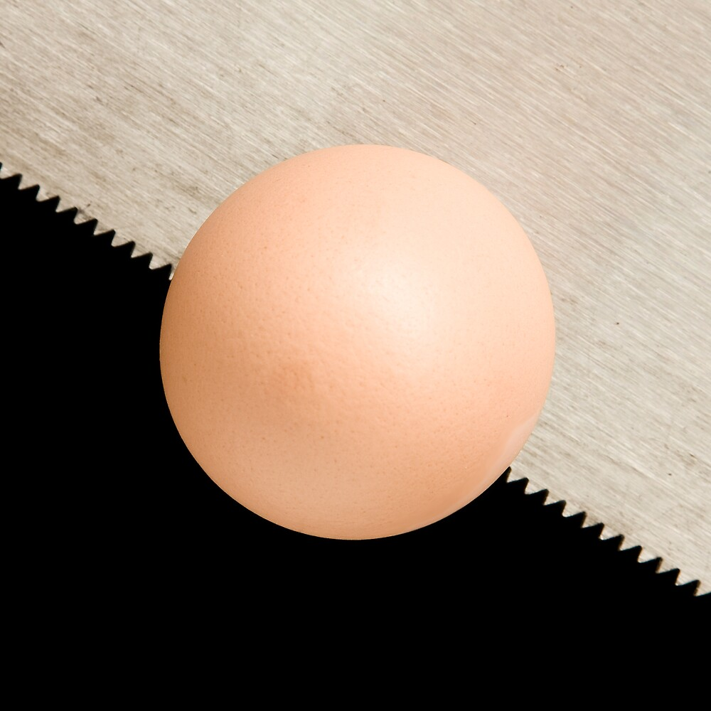 Form of Food - Egg by Michael Morffew