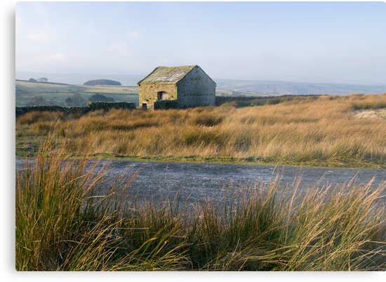 Cold Wind, Warm Light by NaturalBritain