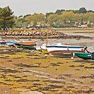 Low Tide - Goulet de Conleau ,Golfe du Morbihan, Brittany by Buckwhite