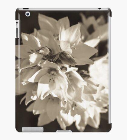 STARE [iPad cases/skins] iPad Case/Skin
