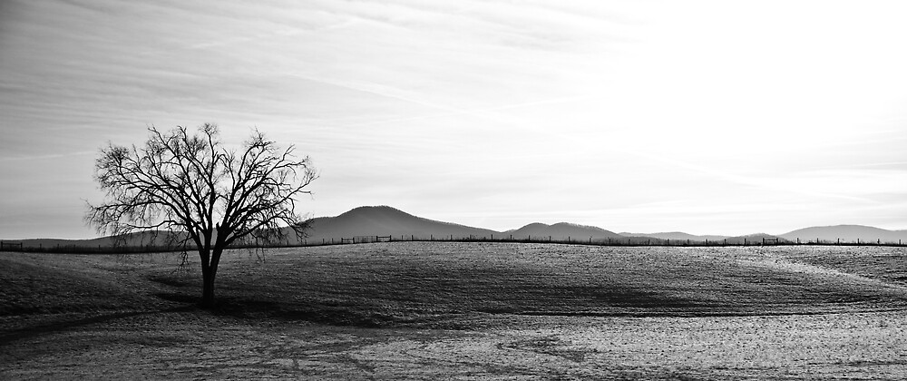 Frosted Hills by WMederski