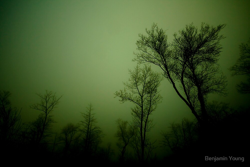 GreenDay.... by Benjamin Young