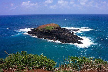 Bird Rock in Kaua'i by Hillary Bowden