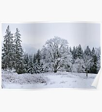 Snowy Pasture Poster