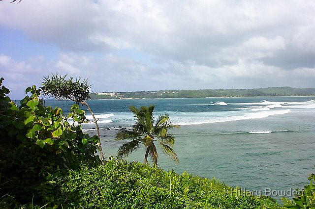 A View of the Bay in Kaua'i by Hillary Bowden