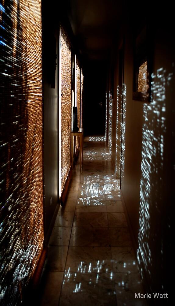 The Passage of Light by Marie Watt