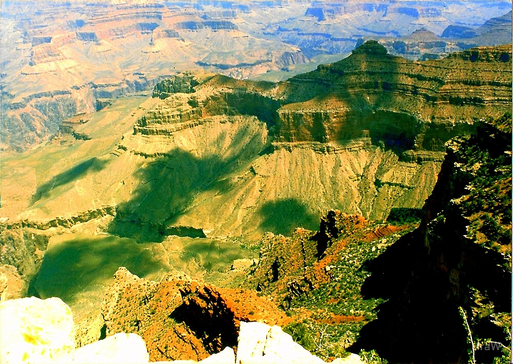 Grand Canyon- Summer by IraW