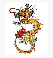 Chinese Yellow Dragon Photographic Print