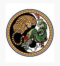 Taoist Yin Yang Illustration Photographic Print