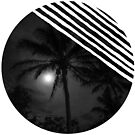 Moon behind the palm by Apatche Revealed