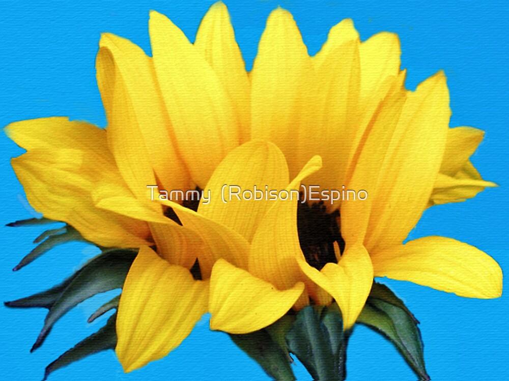 Sunflower by Tammy  (Robison)Espino