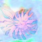 NAUTILUS CONCH SEA SHELL IMPRESSIONS by Saundra Myles