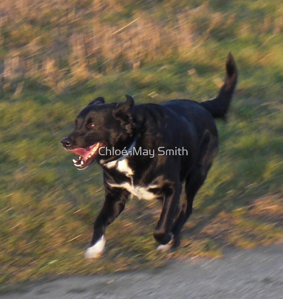 Having a run by Chloé-May Smith