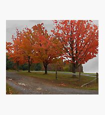 Fall Countryside Photographic Print