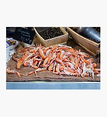 Fresh Raw Langoustine Lobsters Photographic Print