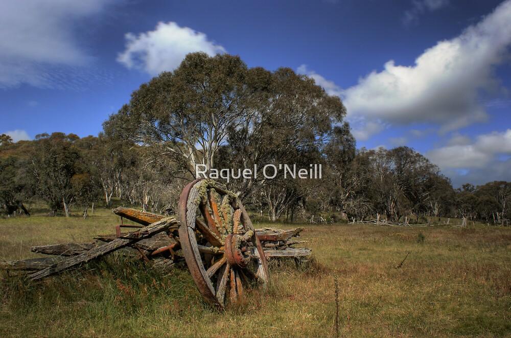 Old Wheel by Raquel O'Neill