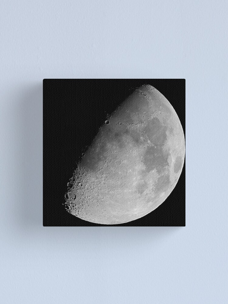 Alternate view of lunar image Canvas Print