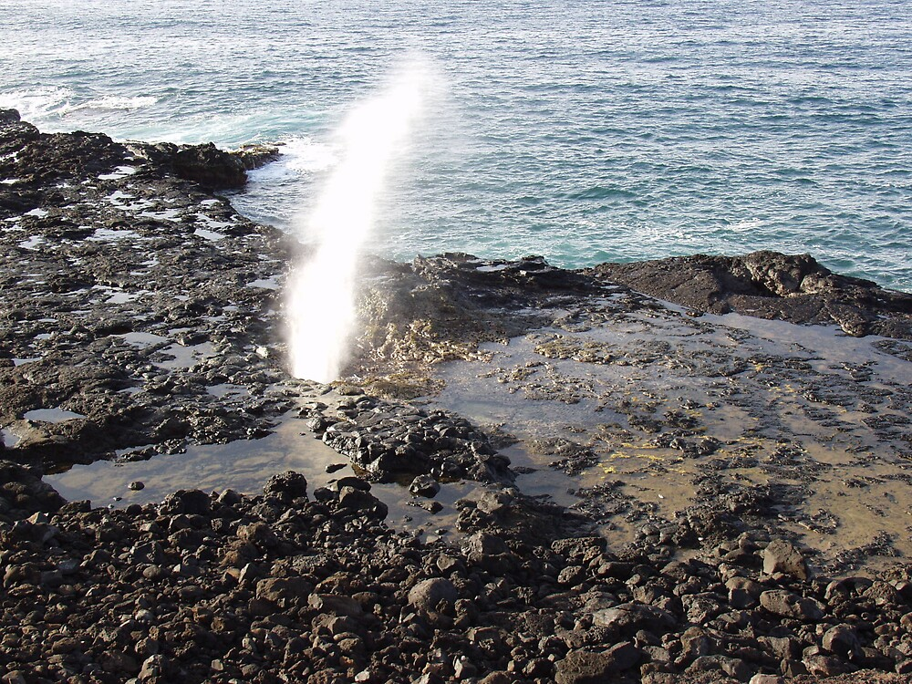 Spouting horn by a l