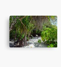 Lounge chairs on the beach in Maldives with exotic vegetation Canvas Print