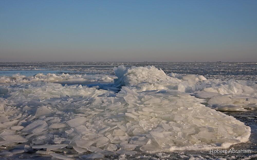 Ice Sculpture by Robert Abraham
