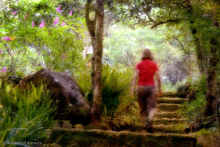 Woman Ascending Stairs, Costa Rica by Richard Lewis
