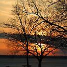 Winter Sunset by John Beamish
