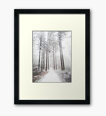 Mysterious road in a frozen foggy forest Framed Print